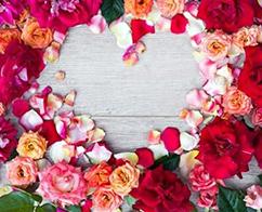 Valentine`s Day La Cerdac